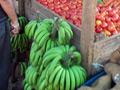 jamajka-thumb.jpg